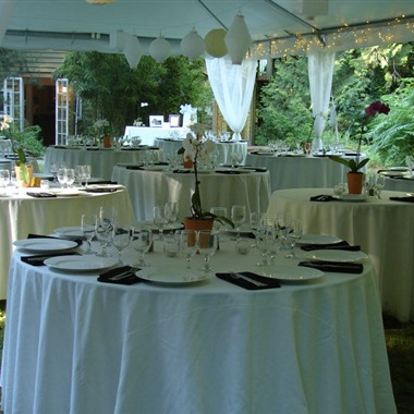Green Apple Events & Catering, LLC wedding vendor preview