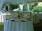 Green Apple Events & Catering, LLC thumbnail