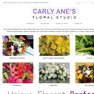 Carly Ane's wedding vendor preview