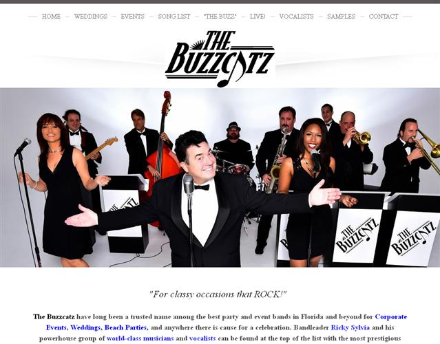 The Buzzcatz Band wedding vendor photo