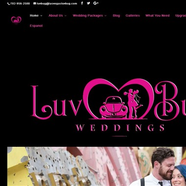 Luv Bug Wedding wedding vendor preview