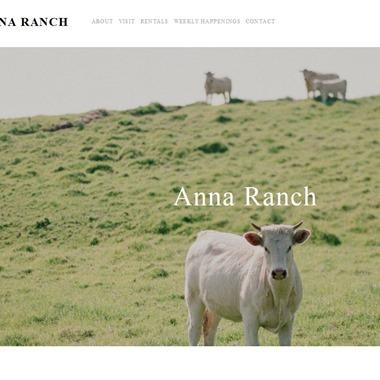 Anna Ranch wedding vendor preview