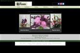 Fujikami Florist thumbnail