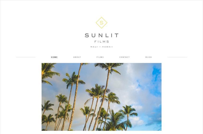Sunlit Films wedding vendor photo