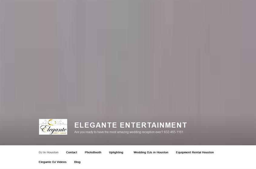 Elegant Entertainment wedding vendor photo