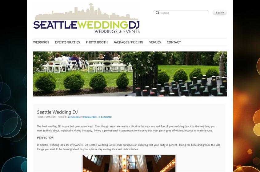 Seattle Wedding DJ wedding vendor photo