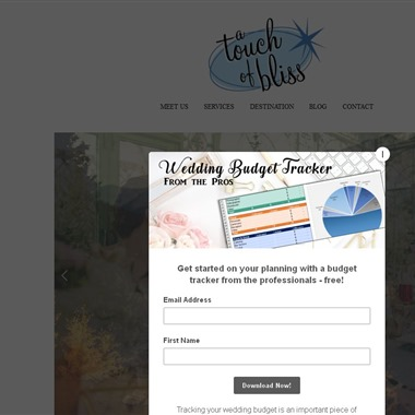 A Touch of Bliss wedding vendor preview