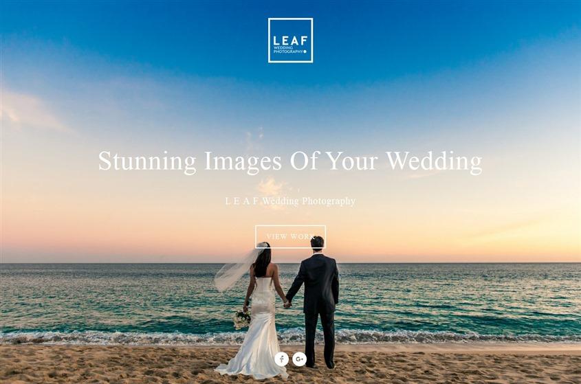 Leaf Wedding Photography wedding vendor photo