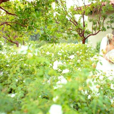 Cary Pennington Photography wedding vendor preview