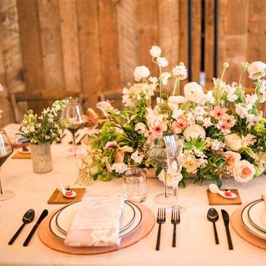 Ohana Events wedding vendor preview