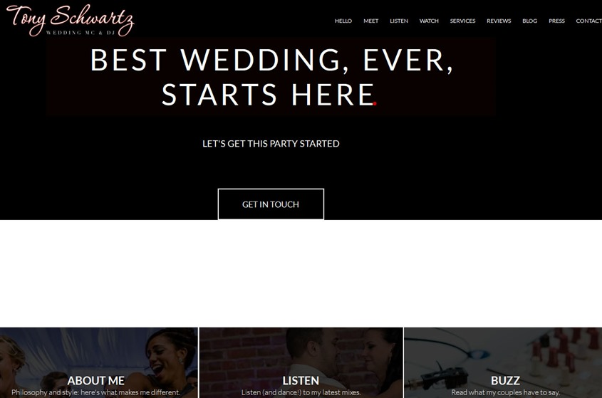 Tony Schwartz Mc DJ wedding vendor photo
