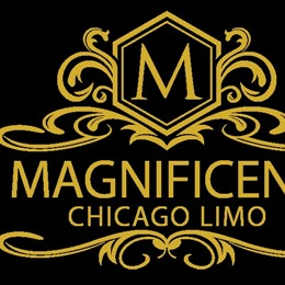 Photo of Magnificent Chicago Limo Test, a wedding Limo Services in Chicago