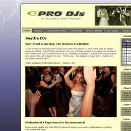 Pro DJs photo