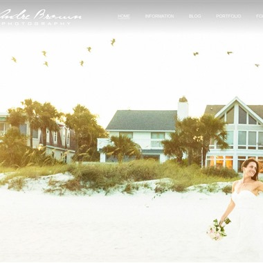 Andre Brown Photography wedding vendor preview
