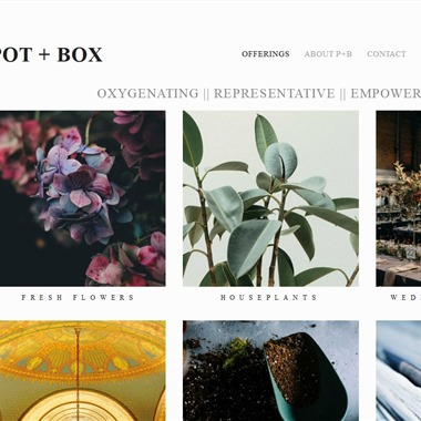 Pot and Box wedding vendor preview