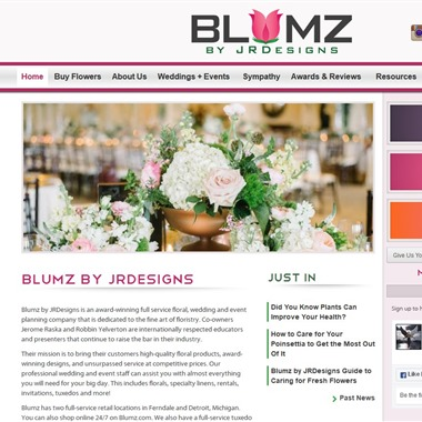 Blumz wedding vendor preview