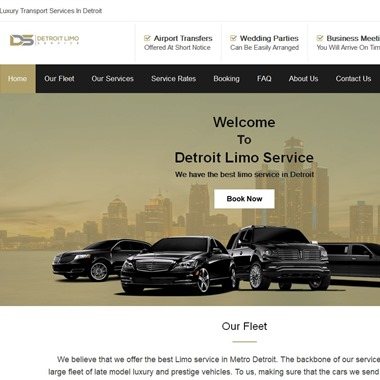 Detroit Limo Service wedding vendor preview