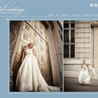 Artful Weddings by Sachs Photography wedding vendor preview