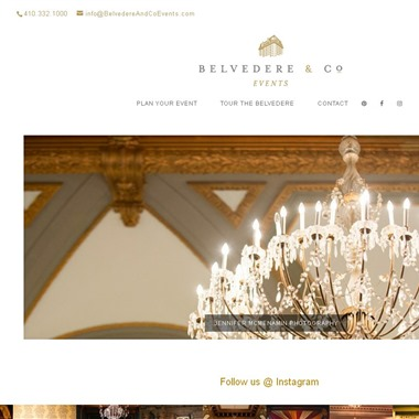 Belvedere & Co wedding vendor preview