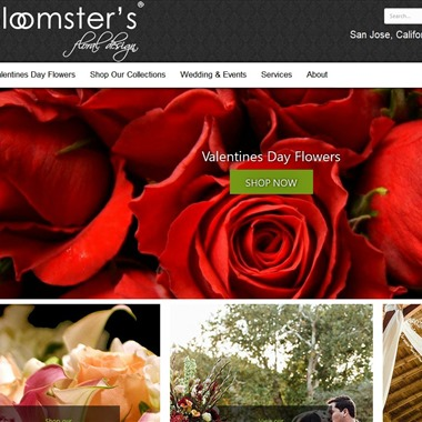 Bloomsters wedding vendor preview