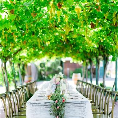 Williams Party Rentals wedding vendor preview