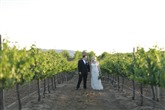 Mount Palomar Winery thumbnail