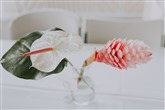 Plant Hawaii Weddings and Events thumbnail