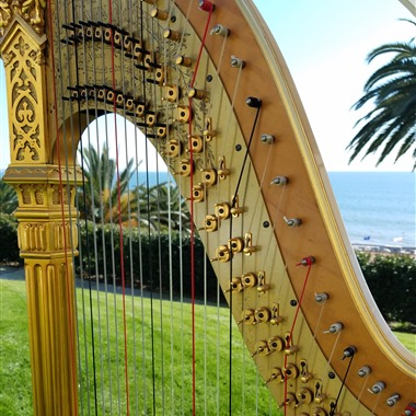 Harp Music by Debora wedding vendor preview
