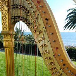 Harp Music by Debora photo