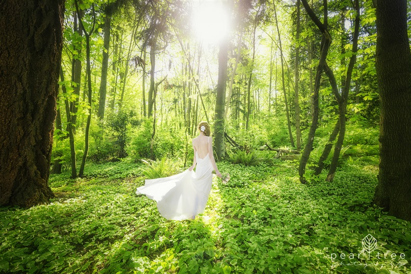 Pear Tree Photography wedding vendor photo