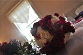 JorgesPhotos Photography thumbnail