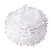 Hmxpls 10pcs White Tissue H...